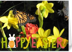 Holiday - Easter/Spring Card