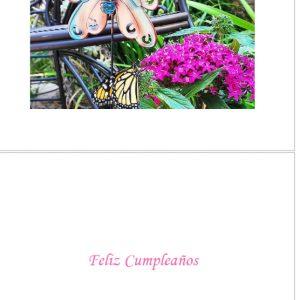 00 SPANISH CARDS